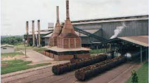 Kwae Oil Palm Mill
